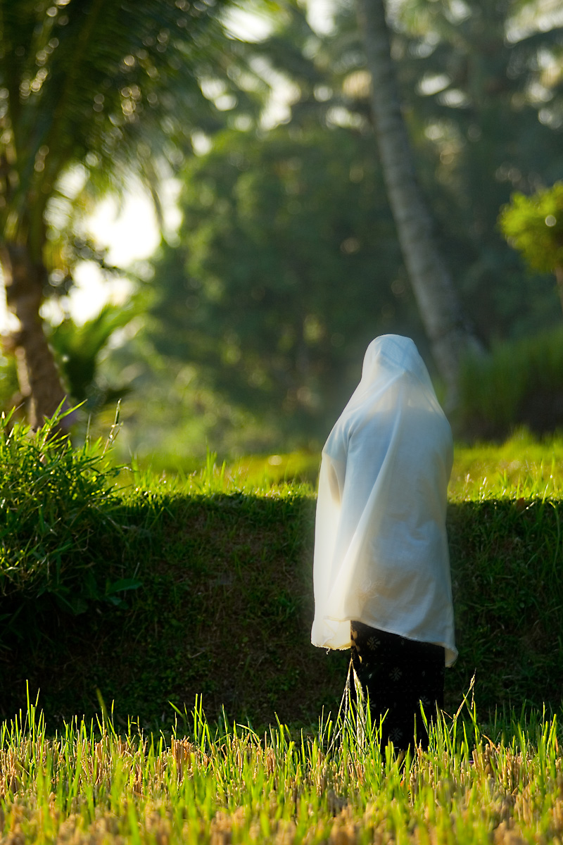 A Muslim woman prays in a rice patty. - Mataram, Lombok, Indonesia - Daily Travel Photos