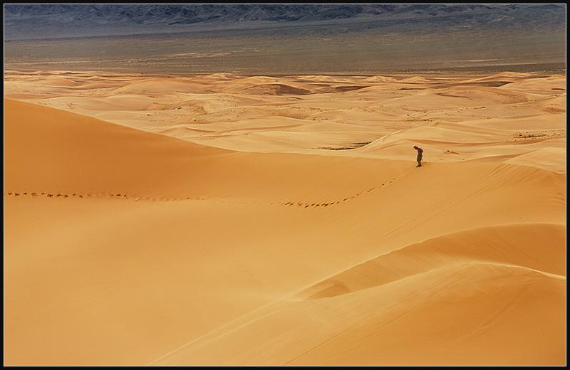 A traveler walks to the top of a large sand dune.  - Gobi Desert, Mongolia - Daily Travel Photos