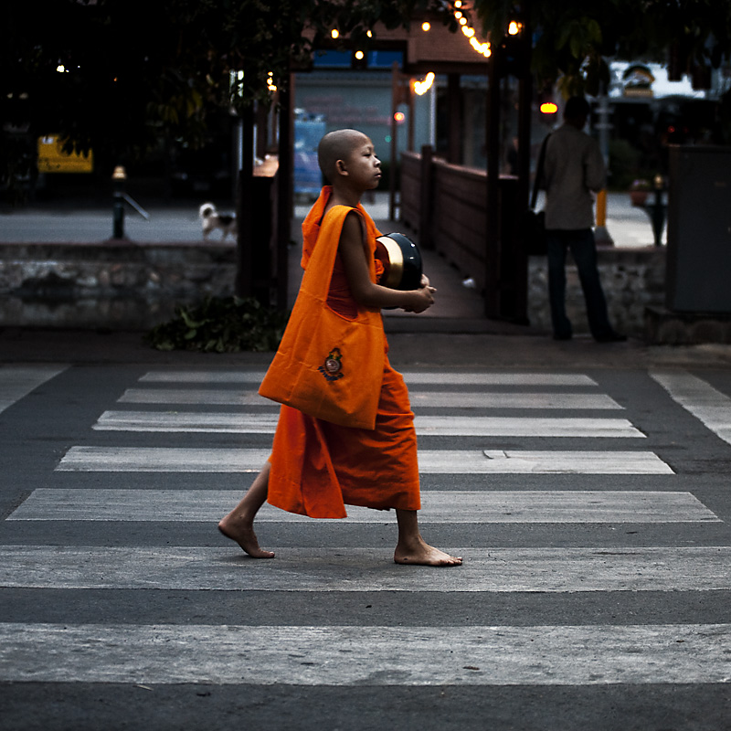 A young boy monk collects alms on Buddha's birthday. - Chiang Mai, Thailand - Daily Travel Photos