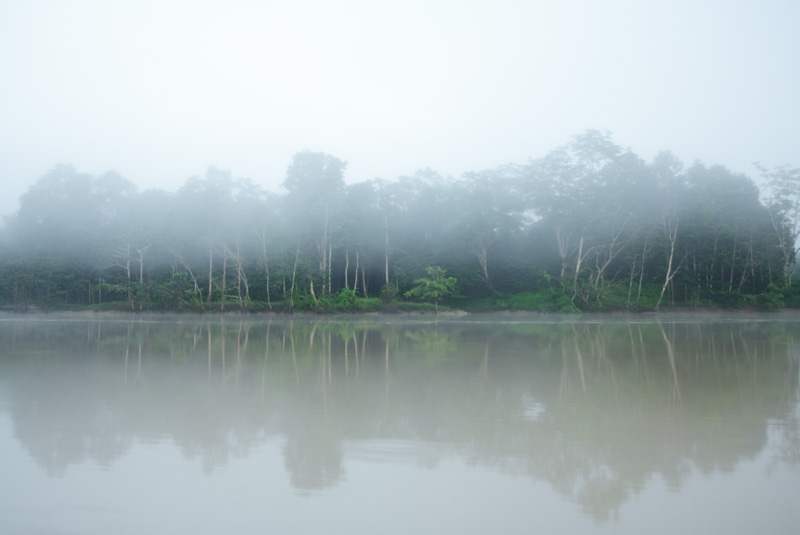 Morning mist over the banks of the Kinabatangan River. - Sungei Kinabatangan, Sabah, Borneo, Malaysia - Daily Travel Photos