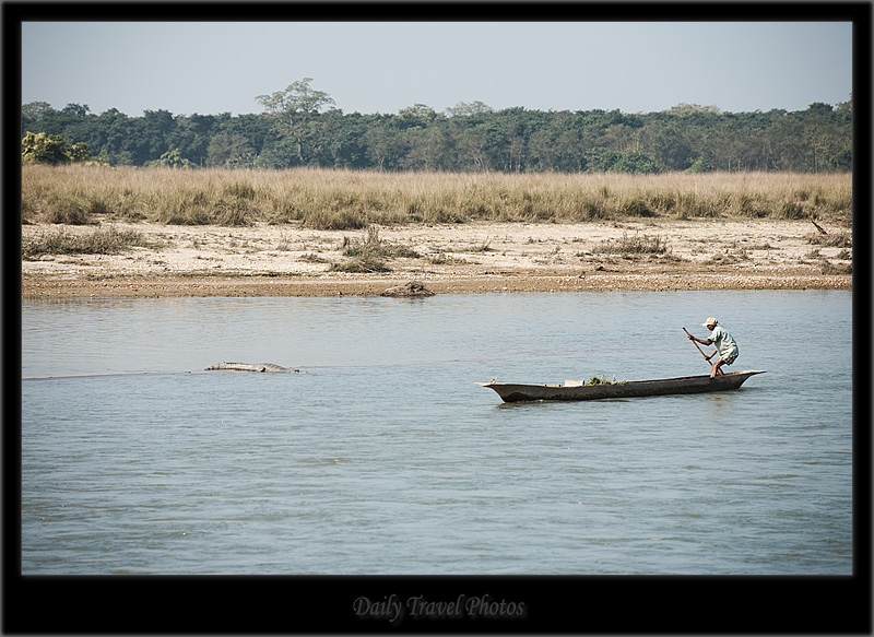 A boatman and crocodile lurking - Chitwan, Nepal - Daily Travel Photos