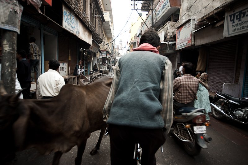 A user-controlled time-lapse of a cycle rickshaw ride. - Mathura, Uttar Pradesh, India - Daily Travel Photos