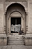 Homeless & Palace Photo: A homeless man finds shelter in the doorway of one of the many abandoned palaces along the river Ganges.