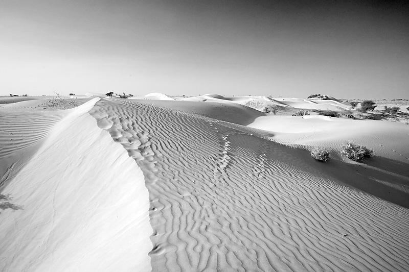 A series of sand dunes in a village near Khuri. - Khuri, Rajasthan, India - Daily Travel Photos