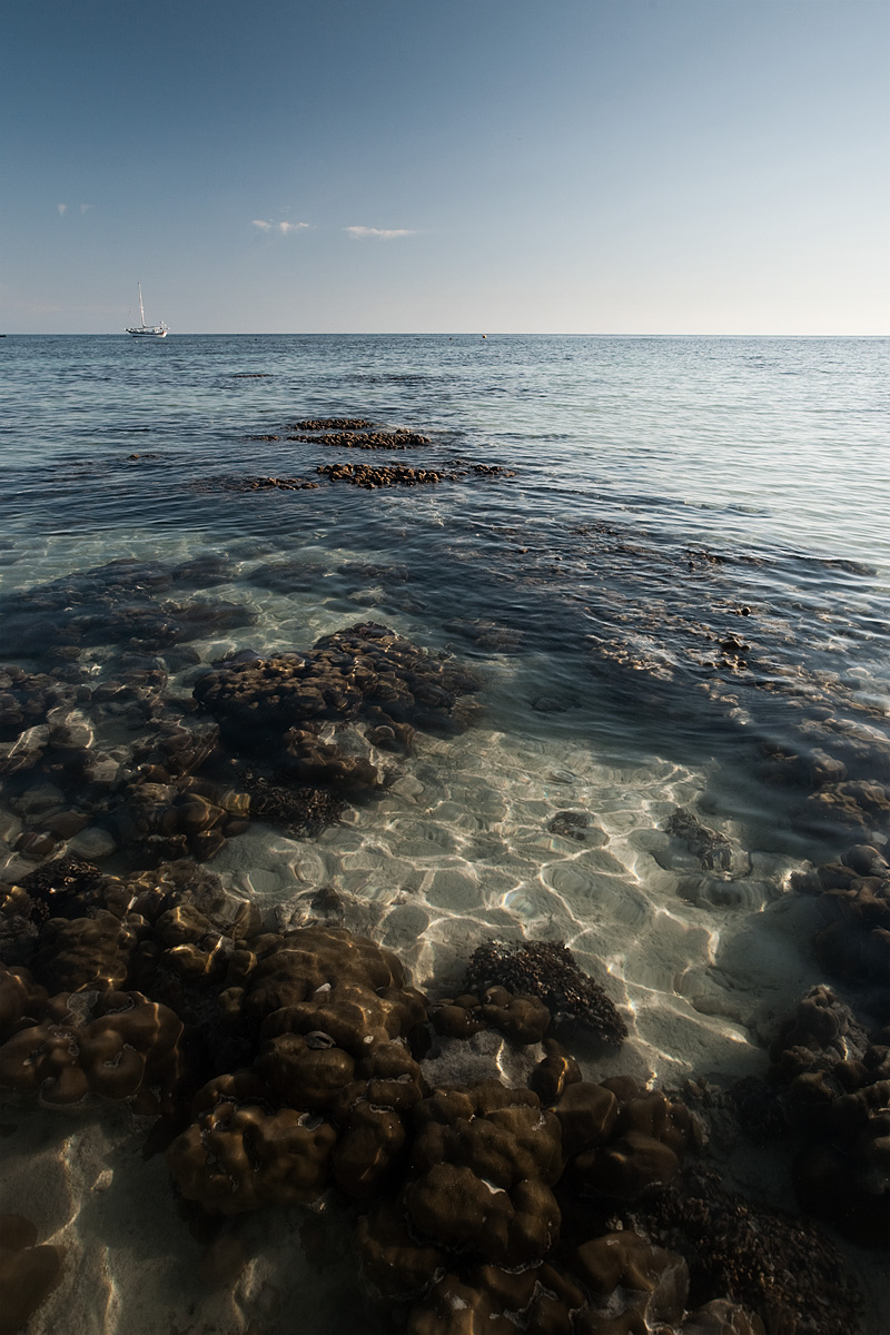 Corals seen through clear ocean water at low tide. - Ko Lipe, Thailand - Daily Travel Photos