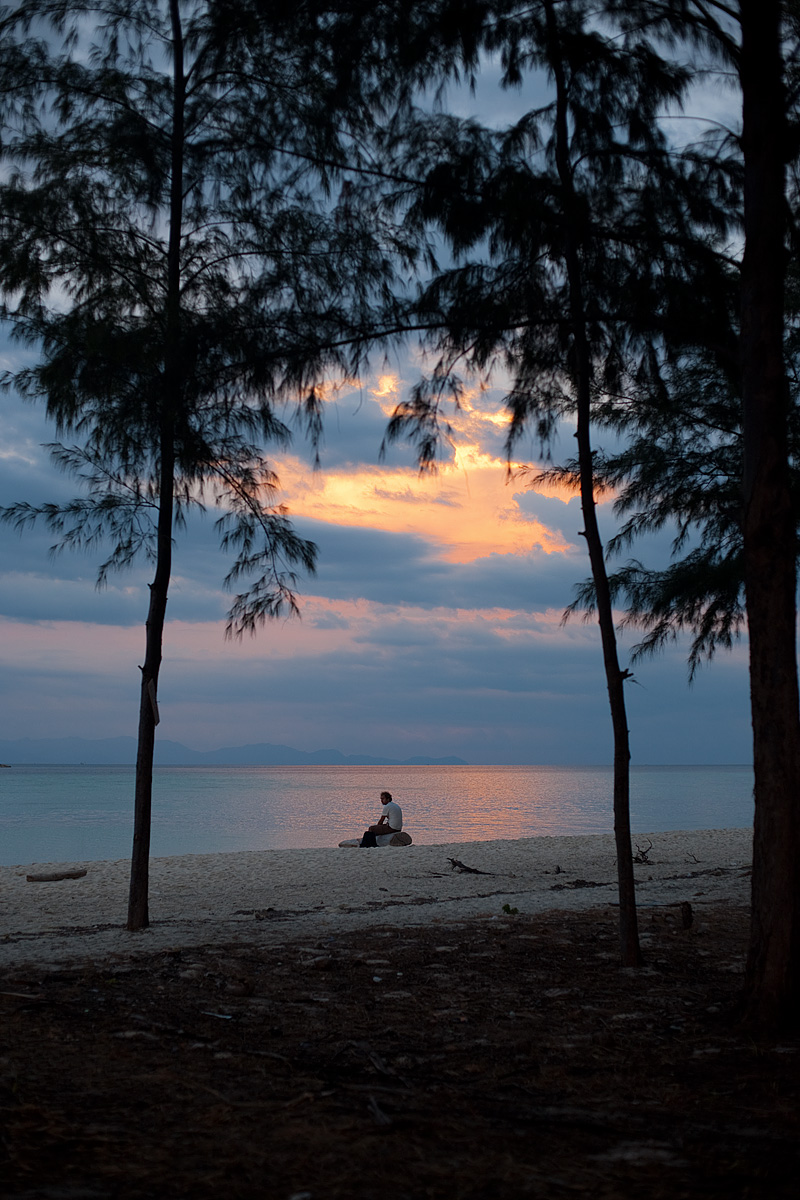 tourist is seen through a sparse forest resting on a piece of dry driftwood. - Ko Lipe, Thailand - Daily Travel Photos