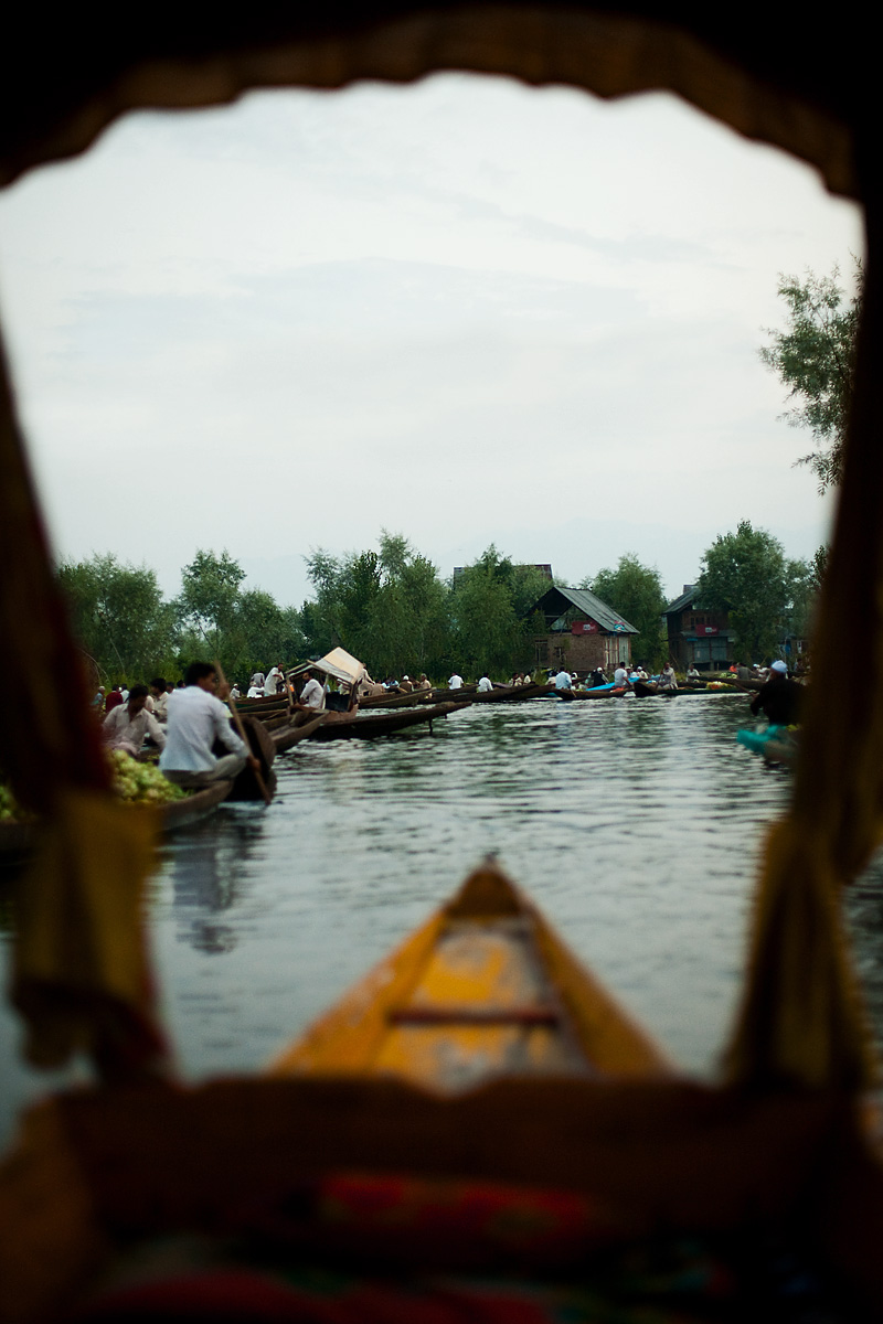 The front window view from our boat looking onto the floating vegetable market. - Srinagar, Kashmir, India - Daily Travel Photos