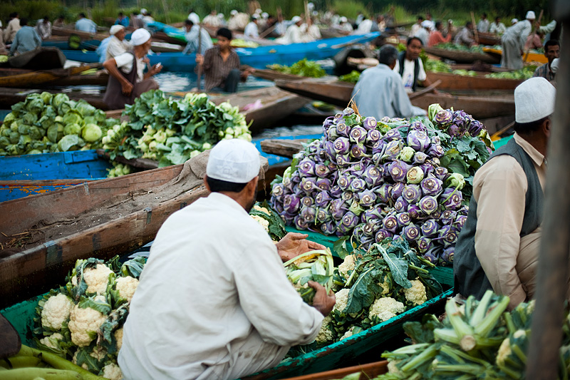 A sea of male boatmen dominate the floating vegetable market. - Srinagar, Kashmir, India - Daily Travel Photos