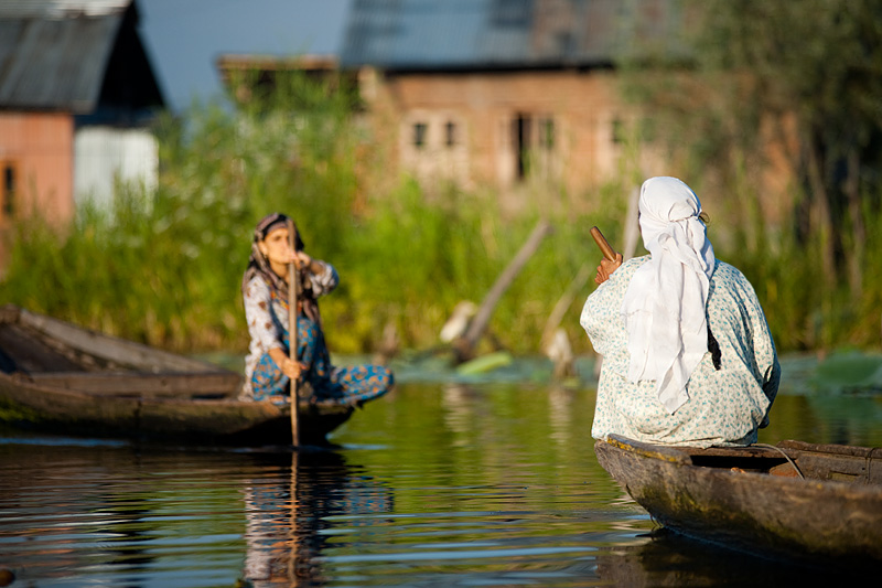 Two boating women approach one another on the back waterways of Dal Lake. - Srinagar, Kashmir, India - Daily Travel Photos