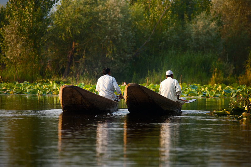 Two Kashmiri men boat in tandem on the backwaters of Dal Lake. - Srinagar, Kashmir, India - Daily Travel Photos
