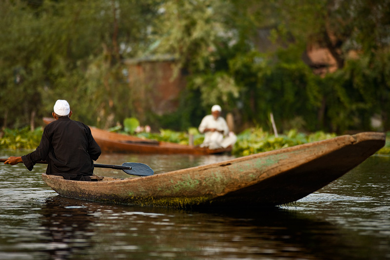 A moss-lined boat is driven past a stationary boatman on Dal Lake. - Srinagar, Kashmir, India - Daily Travel Photos