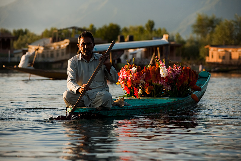 A flower salesman trawls Dal Lake for some customers.  - Srinagar, Kashmir, India - Daily Travel Photos