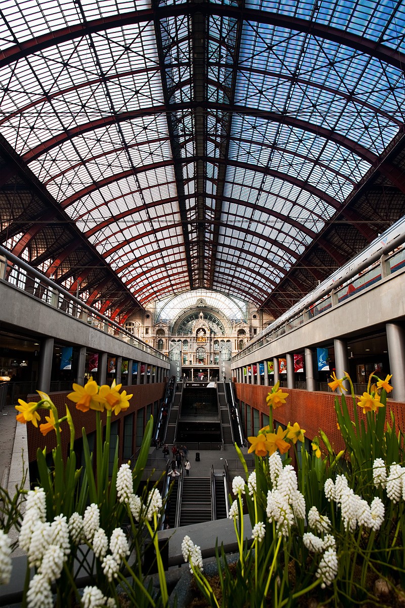 A small bed of spring flowers brighten up the Centraal Station's cavernous train shed. - Antwerp, Belgium - Daily Travel Photos