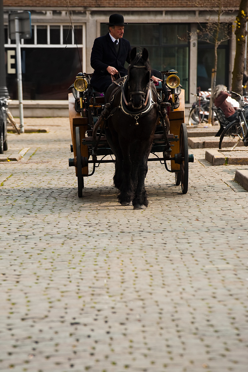A horse and buggy cart tourists around Vrijdagmarkt square. - Antwerp, Belgium - Daily Travel Photos