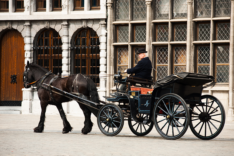 A horse and buggy begin moving to look for passengers. - Antwerp, Belgium - Daily Travel Photos