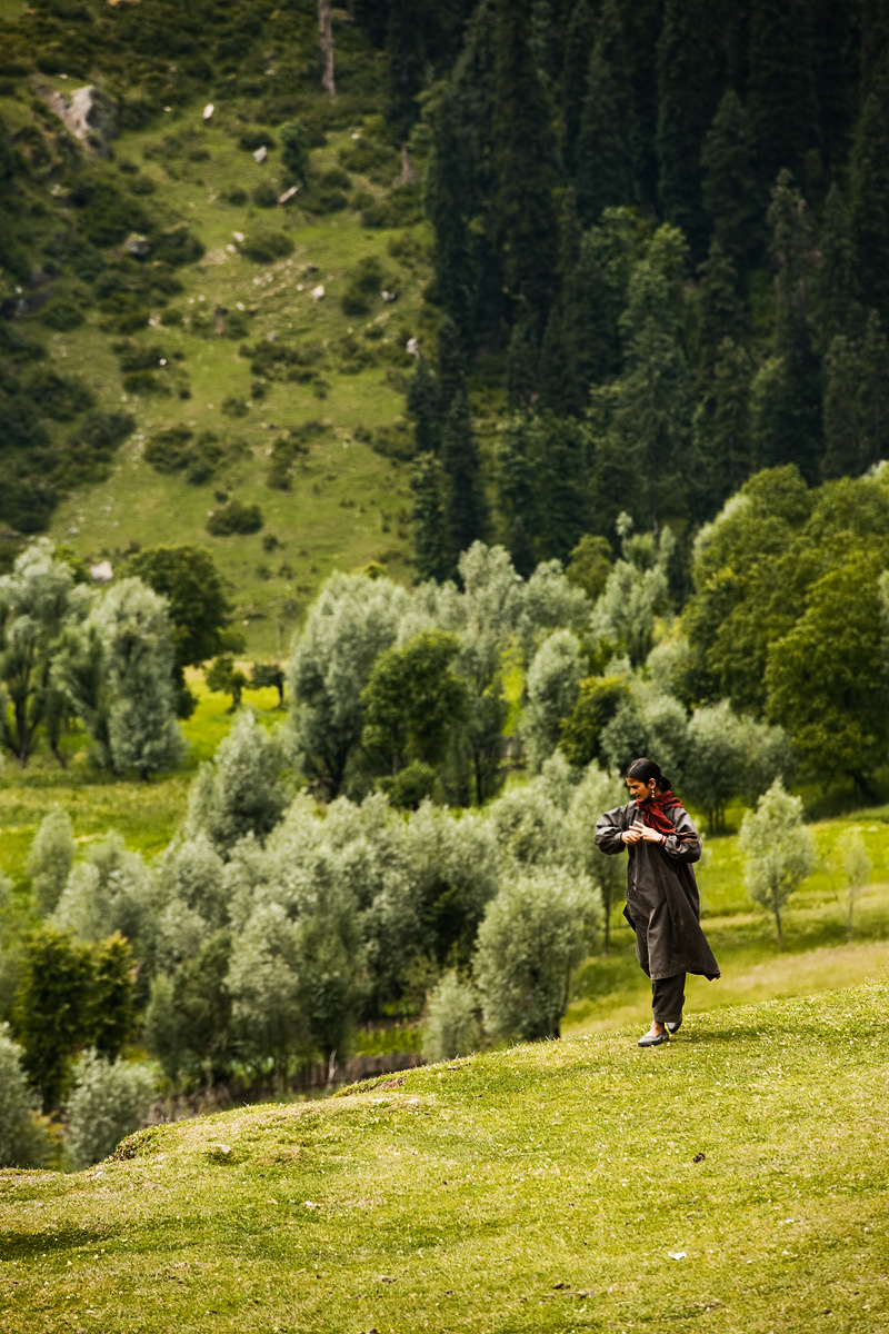 A Kashmiri gypsy herder tends to her grazing herd.  - Aru Valley, Kashmir, India - Daily Travel Photos