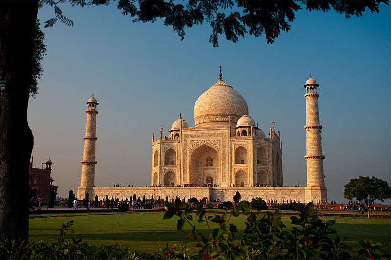 The Taj Mahal at sunset is framed by a tree and bushes. - Agra, Uttar Pradesh, India - Daily Travel Photos