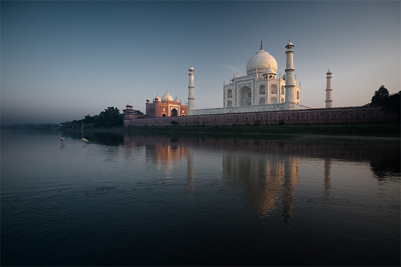 Yellow billed storks walk in the Jamuna river next to the Taj Mahal at sunset. - Agra, Uttar Pradesh, India - Daily Travel Photos