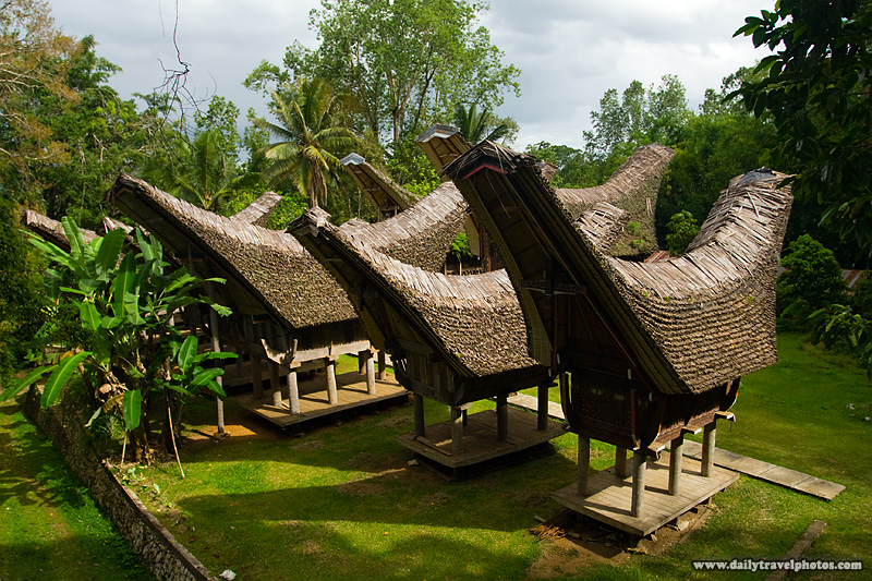 Tongkonan, traditional peaked roof boat houses, of the Tana Toraja people - Rantepao, Sulawesi, Indonesia - Daily Travel Photos