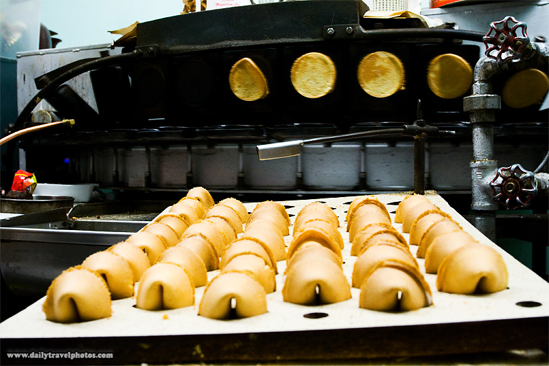 Tray of fortune cookies at a factory in Chinatown - San Francisco, California, USA - Daily Travel Photos