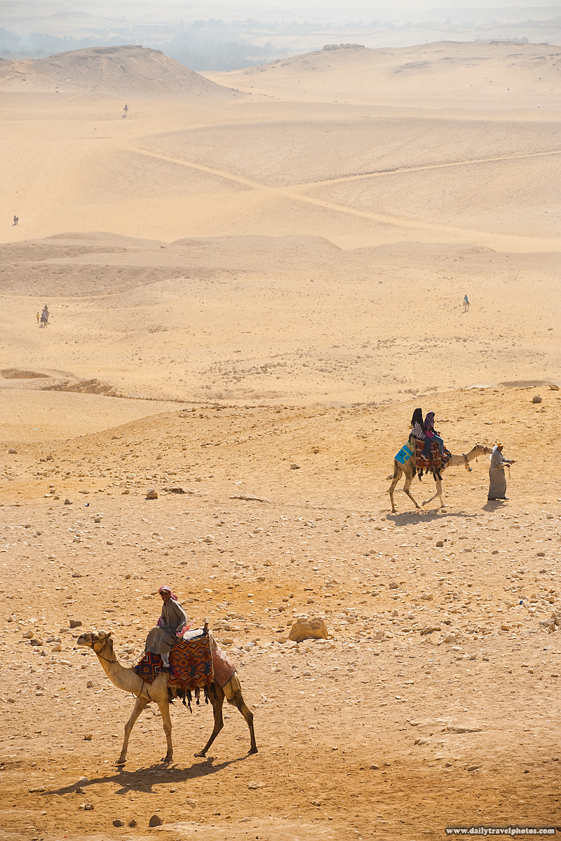 Camel Guides Herders Tourists Desert Giza - Cairo, Egypt - Daily Travel Photos