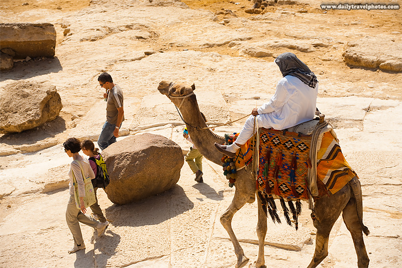 Egyptian Camel Guide Annoyance Giza Pyramids - Cairo, Egypt - Daily Travel Photos