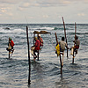 Vertical Angling Photo: A group of Sri Lankan stilt fishermen fish in a rough ocean (archived photos, on the weekends).