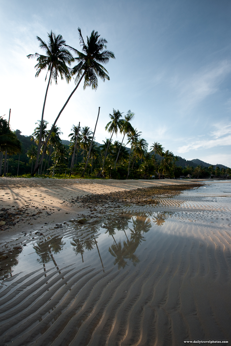 Palm Trees Lined Empty Serene Lonely Beach - Ko Chang, Thailand - Daily Travel Photos