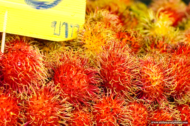 Closeup Hairy Red Rambutan Fruit - Bangkok, Thailand - Daily Travel Photos
