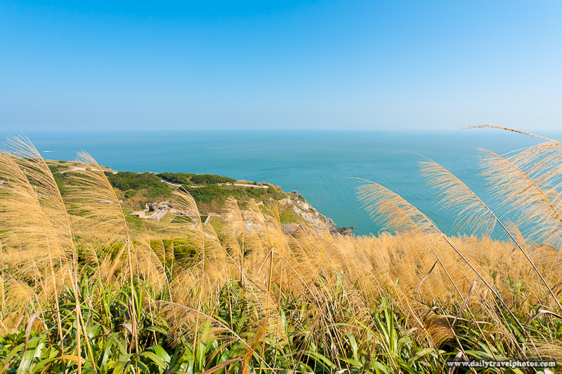 Tall Grass Partially Obscures Beautiful Landscape Cliffs Ocean Below - Juguang, Matsu Islands, Taiwan - Daily Travel Photos