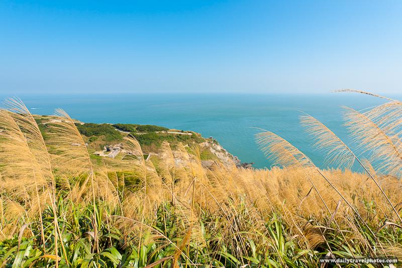 Tall Grass Partially Obscures Beautiful Landscape Cliffs Ocean Below - Juguang, Matsu Islands, Taiwan - Daily Travel Photos