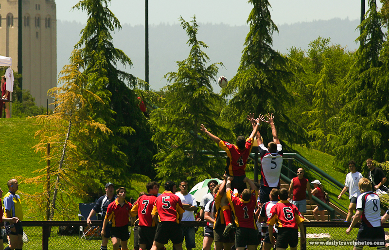 Teammates Lift for Ball at Amateur Rugby Tournament - Palo Alto, California, USA - Daily Travel Photos