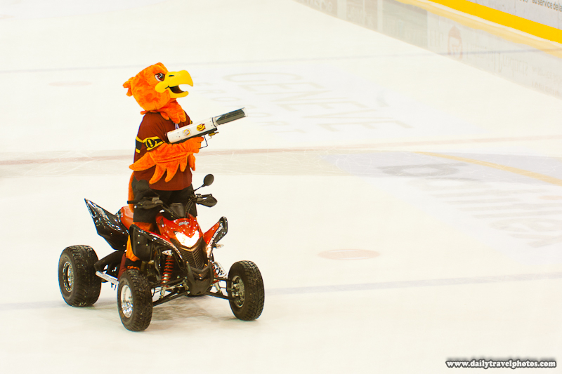 Geneve-Servette Wild Eagle Mascot Shooting T-shirts at Fans - Geneva, Switzerland - Daily Travel Photos