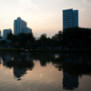 Lumphini Park Lizard Photo: A water monster lurks in downtown Bangkok's Lumphini park at sunset.