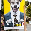 Beast Ballot Photo: Campaign posters for upcoming elections featuring a salivating dog.