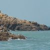 Bird Bunch Photo: A set of rocky islets near Daqiu, a bird watching destination, provide a home to a large assortment of terns on the Matsu islands of Taiwan.