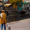 Dog Walk Photo: A local resident walks her dog near Palais de l'Isle in Annecy, France.